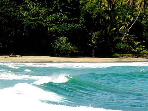 cahuita cartago province costa rica beachbound places to visit in costa rica