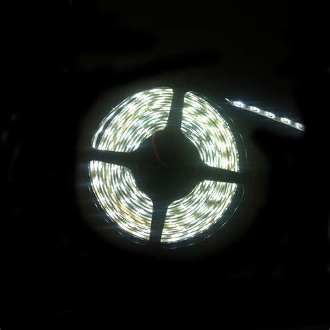 Led Ip65 Strip Light 5m Cool White 3528 Ledip65cw3528 Ip65 Led Light