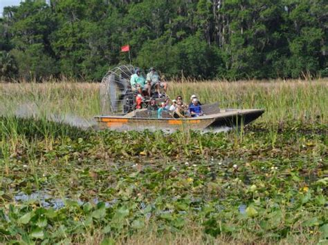 airboat adventures at boggy creek airboat rides in orlando atd