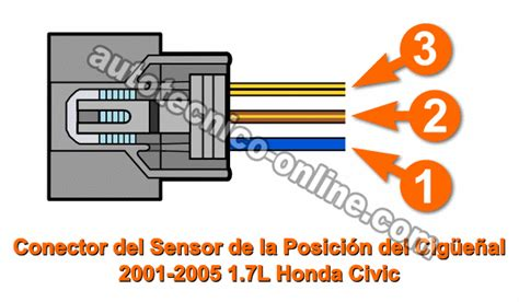 96 maxima trunk wiring diagram 96 get free image about