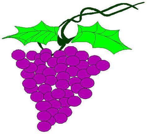 imagenes infantiles uvas dibujos de uvas