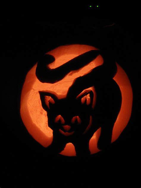 cat s eyes 13 cat pumpkin carving ideas for halloween