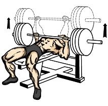 bench press technique for beginners bench press workouts for beginners tips and advice