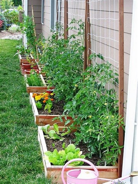 Vegetable Container Garden Ideas Do This Along Back Wall Of Garage Herb Container Garden May Work For Lettuce And Cool