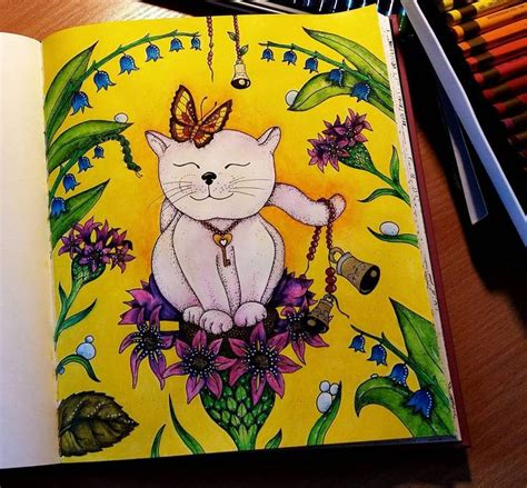 libro magical delights colouring book 100 best images about kl 225 ra markov 225 on coloring brother sister and pens