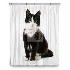 Cat Themed Bathroom Decor Vision Bathroom Dog Cat Themed On Pinterest Home Decor