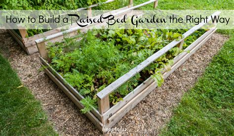 How To Build A Raised Bed Garden Frame How To Build A Raised Bed Garden The Right Way Happiness Matters