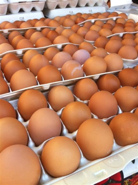 Fresh Eggs Shelf Unrefrigerated by Kissmybundt Net 187 Can You Eat Unrefrigerated Fresh Eggs