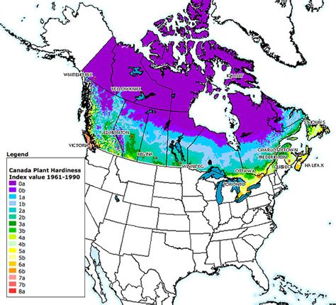 garden zone by zip code plant hardiness zones in canada everything zoomer