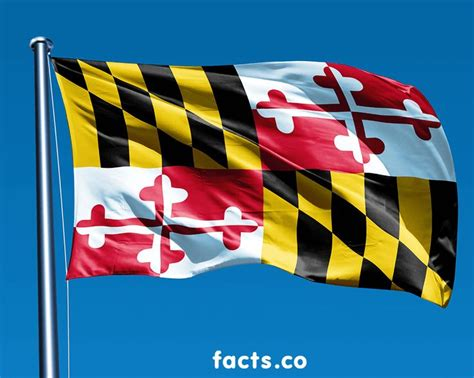 maryland colors 17 best images about maryland on chesapeake