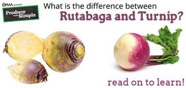 what is the difference between a and a sofa what s the difference between turnip and rutabaga