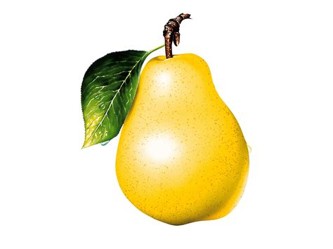 birne le wallpaper pear clipart photo