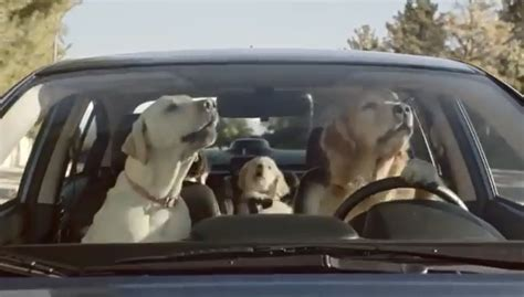 industrial puppy 2015 subaru commercial with a autos post