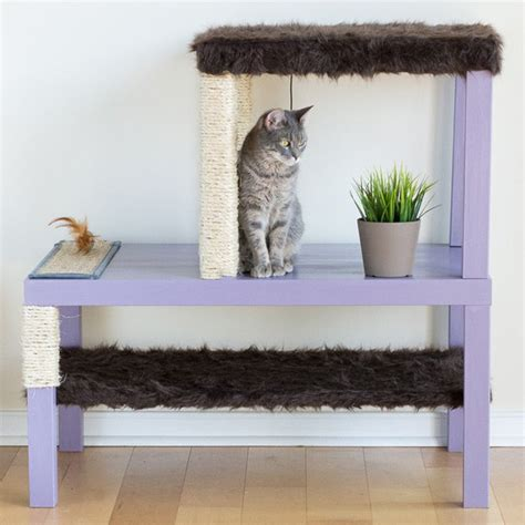 home diy ideas 11 creative cat diy home projects for cat lovers diy