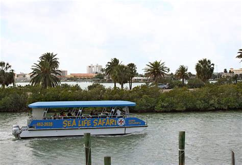 clearwater boat tours clearwater beach and boat tours orlando fl