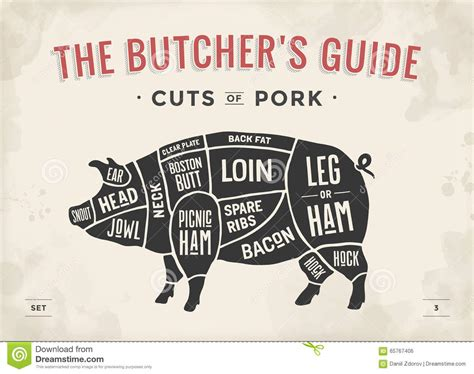 beef cuts diagram butcher cut of set poster butcher diagram scheme and guide