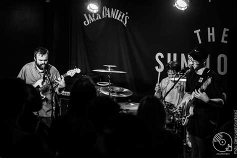 the puppy lounge review kagoule bring heavy set to the sunflower lounge