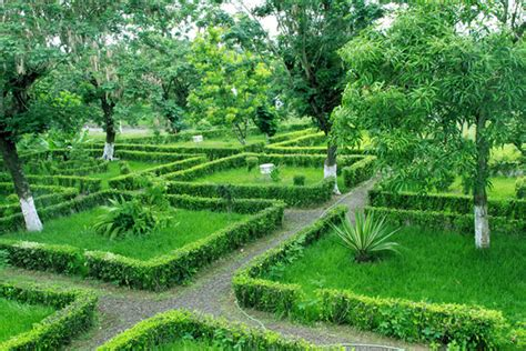 beautiful garden pictures beautiful garden a photo from cuanza norte north trekearth