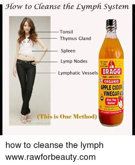 How To Detox Your Tonsils by How To Cleanse The Lymph System Tonsil Thymus Gland Spleen
