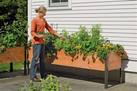 Elevated Cedar Planter Box by Planter Boxes Standing Height Cedar Raised Garden