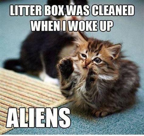 Cat Alien Meme - aliens cat meme funny pinterest
