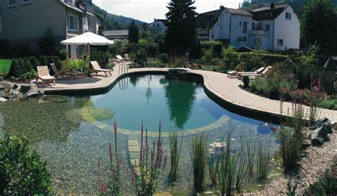 backyard swimming pond backyard swimming pools and small ponds beautiful