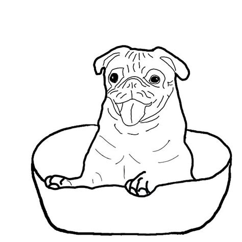 coloring pages of boxer puppies boxer dog sitting in a bowl coloring pages best place to