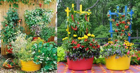 stunning container vegetable garden design ideas tips