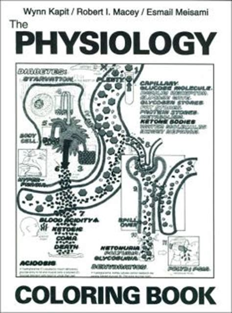 anatomy coloring book barnes noble the physiology coloring book by kapit 9780060434793