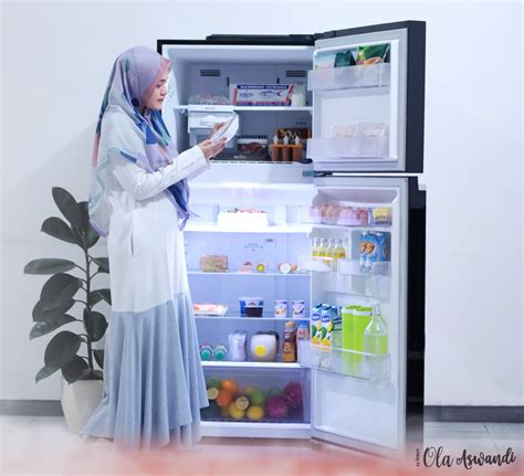 Freezer Mini Untuk Es Batu review lemari es lg linear top freezer ola aswandi