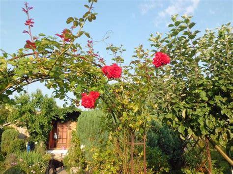 gartenanlage zwickau kleingarten in zwickau rosenfreunde vermietung