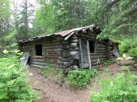 State Of Alaska Cabins by Beemans Cabin Denali State Park Alaska Photorator