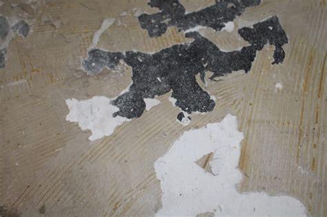 pvc boden entfernen wie alten pvc kleber entfernen welcher untergrund ist das