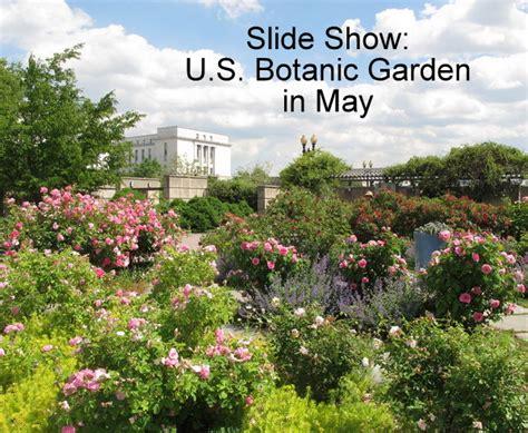 Maryland Botanical Gardens Botanical Garden Maryland Ladew Topiary Gardens Wonderful Botanical Gardens Md The 10 Most