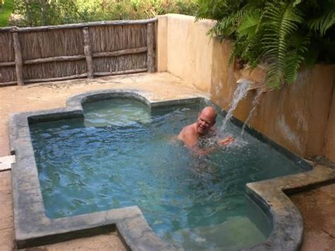 small backyard plunge pool tropical garden plunge pool bar google search ideas