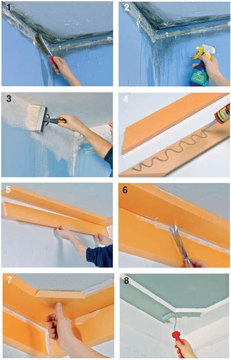 muffa sui muri come intervenire per eliminarla