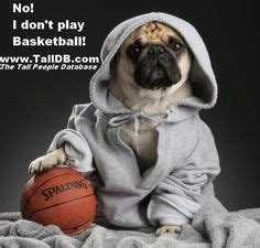 pug basketball books worth reading on
