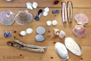 nature materials symmetrical pattern making with natural materials the