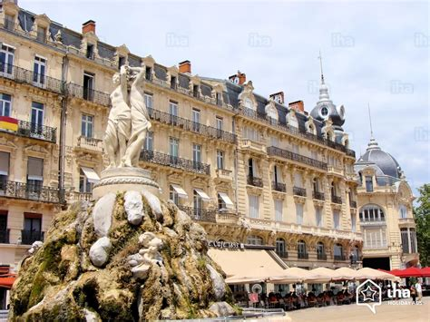 5 Bedroom House For Rent montpellier rentals in a bed and breakfast for your vacations