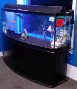 155 Gallon Bow Front Aquarium Fish Tank Complete Phila PA