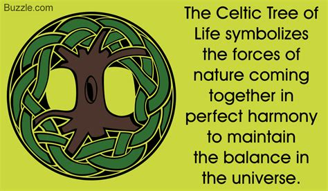 tree meaning explaining the meaning of the celtic tree of