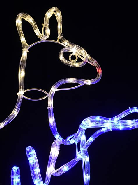 australian coat of arms aussie christmas led rope light