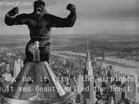 movie quotes king kong 100 top famous movie quotes funny gifs