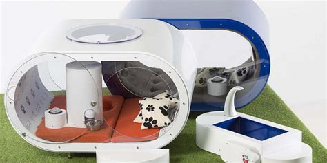 Samsung Showcases A 30000 Doghouse In Uk Igyaan