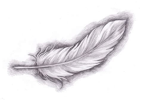 tattoo feather sketch sketch of feather tattoo ideas tattoo collection