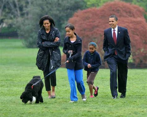 presidential dogs dogs in the white house u s presidents and their adorable pooches