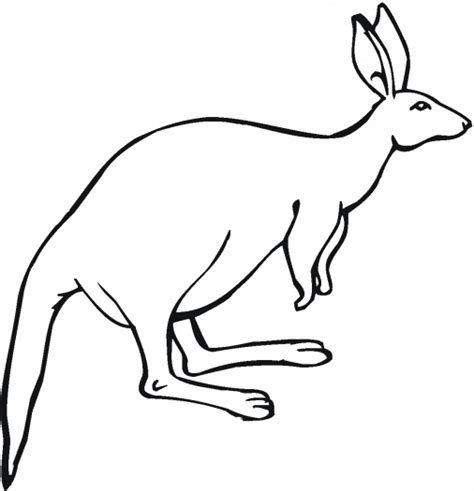 kangaroo coloring pages pdf 14 printable kangaroo coloring pages print color craft