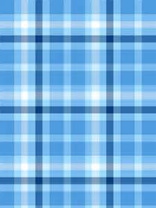 light blue plaid digital