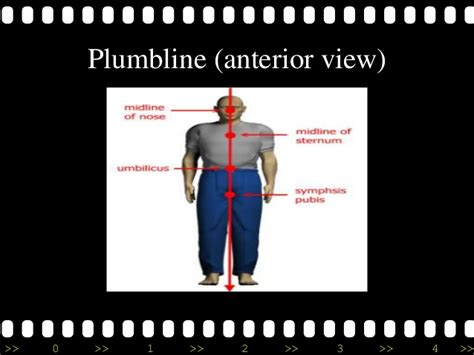 Plumb Line Assessment by Plumb Line Assessment 28 Images Ppt Ace Personal