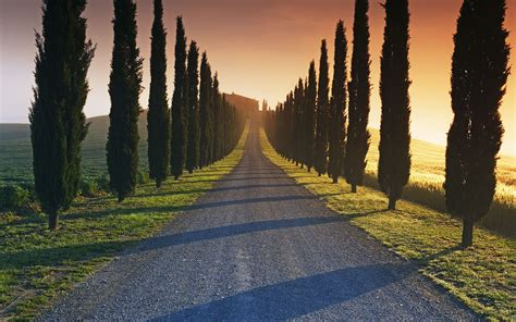 road   italian estate wallpapers  images